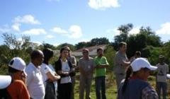 Plantio de mudas marca Dia do Meio Ambiente em Paracatu