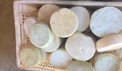 Fiscais apreendem 662 Kg de queijo impróprio para consumo em Paracatu