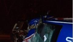 Animais na pista provocam acidente com Ambulância na MG 188