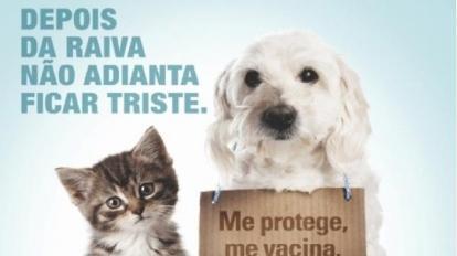 Campanha de vacina��o antirr�bica come�a na pr�xima semana em Paracatu