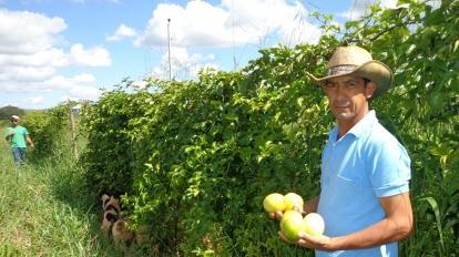 Cooperfruta receber� consultoria para qualifica��o dos produtos e servi�os em Paracatu